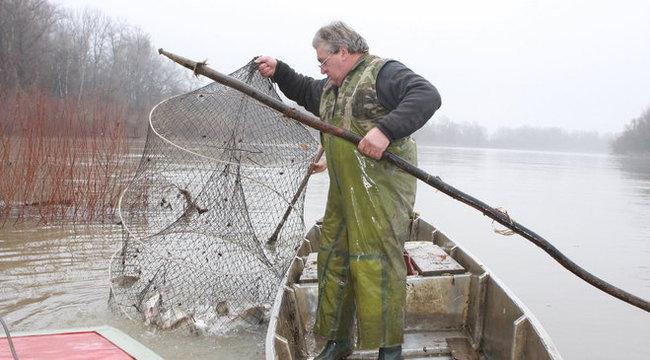 Tiszai halász: Elvették az életünket