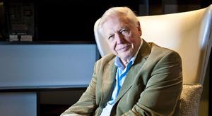 Elképesztő, mennyi idős David Attenborough