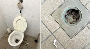 Bors-teszt: Koszosak és ragacsosak a benzinkutak mosdói