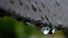 Borongós, esős idővel indul május