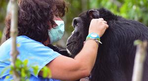 Szívszorító: megvan a világ legmagányosabb állata