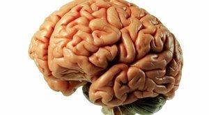A kamaszok agya a legfogékonyabb a mentális betegségekre