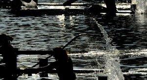 Megszüntették a nyomozást a molesztálással gyanúsított zalai kajakedző ügyében