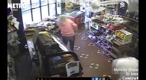 Bolti lopáson kapták a sirályt - videó