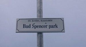 Fordulat: tényleg lehet Bud Spencer park Óbudán!
