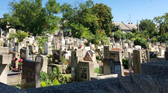 Kilátszott a holttest a budafoki sírból