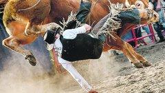Életéért futott a bika elől a fotóriporterünk
