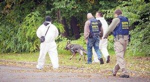 Bréking! Azonosították a Népligetben talált holttestet