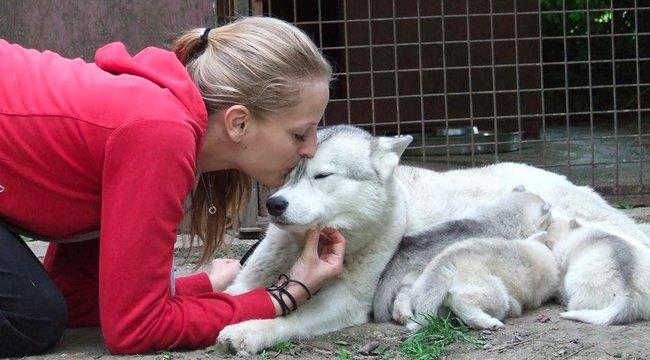 Kitty:A kutyáim szőrébe kapaszkodva tanultam meg járni