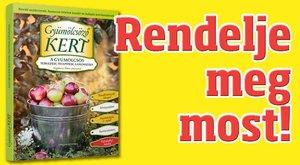 Könyv: Gyümölcsöző kert