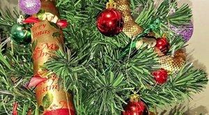 Sokkoló meglepetést talált a karácsonyfáján - fotó