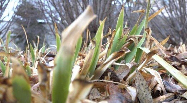 Még várni kell a tavaszra: ilyen idő lesz hétvégén