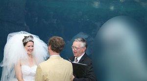 Ennél a váratlan esküvői vendégnél nincs oltáribb – fotók
