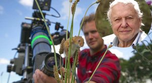 Állatok is filmeztek a leghíresebb természetfilmesnek