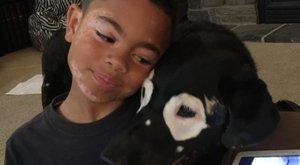 Megható kötődés: egymásra talált a bőrbeteg kisfiú és a beteg kutya