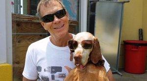 Állatkínzással vádolják a kutyaszerető férfit