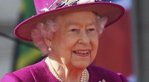 Cipőbetörője és hattyúszámlálója is van a királynőnek