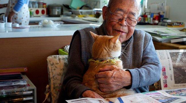 Ennek a cicának köszönheti az életét a mufurc öregúr