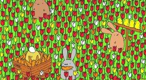 Megtalálja a képen az elrejtett tojást? – Játék