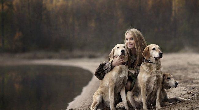 Szombaton ünneplik először a Felelős Állattartás napját