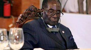 Mugabe:Nem bírom a fényt! – de nem csak ő alszik szívesen, mikor nem kéne