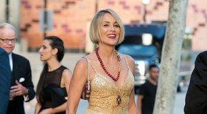 Sharon Stone nem talál párt magának