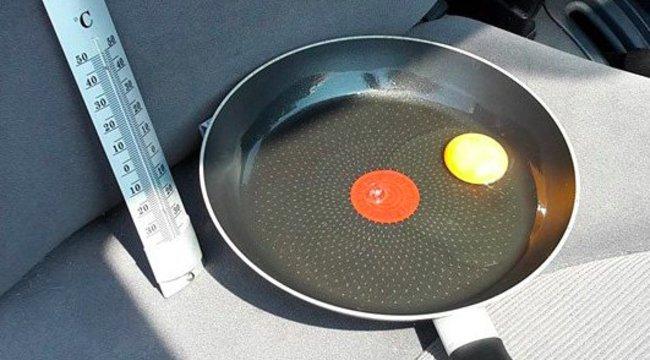 Forró kocsiban készül a tükörtojás – ezért ne hagyja bent a kutyáját (se)! – fotók