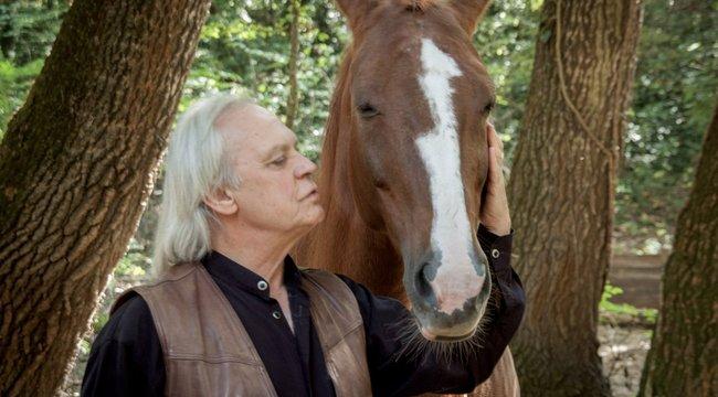 Lóval gyógyított Benkő Péter