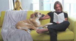 Rókával pacsizik az állatmentő Iggy Pop