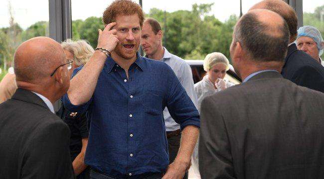 Harry herceg: nekütyüzzön a gyerek!