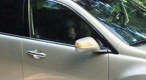 Reggel közölték a párral: csapdába eset a kocsijukban egy vadállat