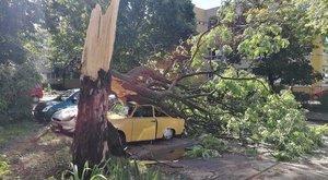 Trabantot lapított ki a vihar Csongrádban - fotó