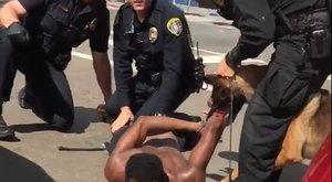 Engedték a rendőrök, hogy megbilincselt embert harapjona K9-es