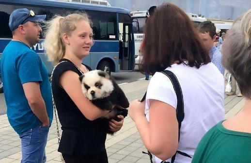 Iszonyú átlátszó trükkel akart pénzt kicsalni turistákból egy orosz férfi