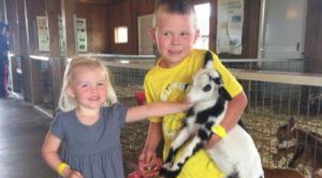 Állatfarmot látogatott a család, az egyik gyerekük már meghalt