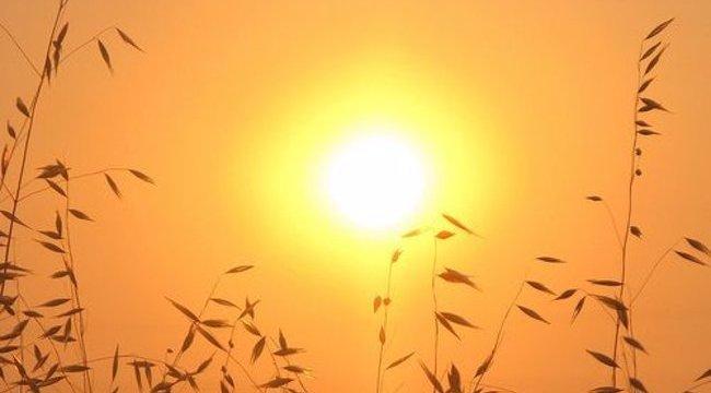 Vigyázat! Két megyében a legmagasabb figyelmeztetést adták ki a hőség miatt