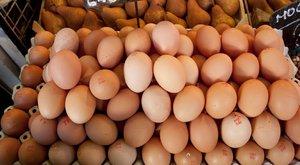 Rovarirtót tartalmaztak a holland tojások