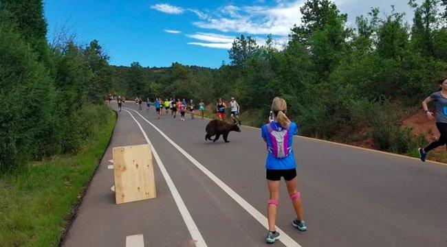 Ennél jobb motiváció nem létezik a gyors futáshoz