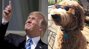 Egy (két) jobb dolog volt csak hétfőn az amerikai napfogyatkozásnál