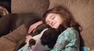 Cukrot keresgélt, de azt nem talált a 4 éves, viszont meghalt