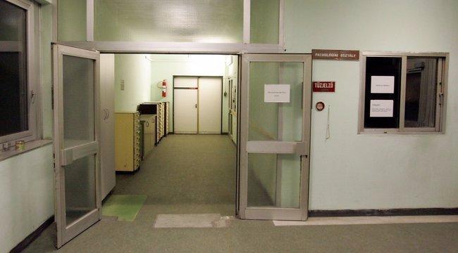 Elmúlt nyolc év: az LMP szerint duplájára nőtt a kórházi fertőzések száma