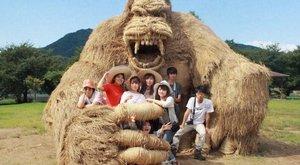 Szalma King Kong riogat