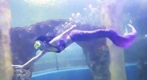 Egy hónapja úszni se tudott, most pedig sellőként tölti mindennapjait