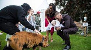 McGregor bulira szórja a pénzét – képek