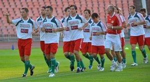 Várhidi:Felelőtlenség a Szélesi–Lőw párosra bízni a válogatottat