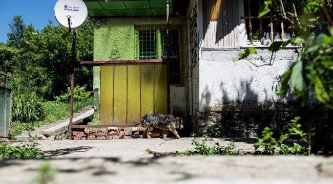 Feleségével bujkál a 9 éves kislányát fejbelövő miskolci apa