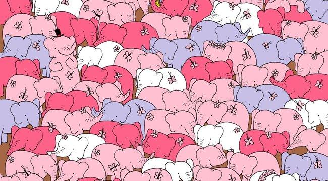 Rózsaszín elefántokkal adta fel a leckét a magyar képrejtvénykirály