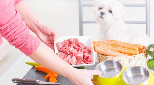 Jót tesz vagy árt a nyershús koszt?