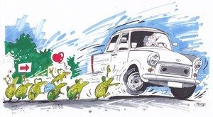 Vezessen óvatosan: békák hada lepi el a forgalmas utakat