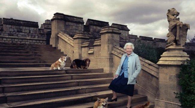 Utolsó corgiját gyászolja II. Erzsébet